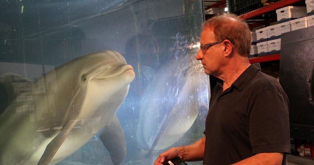 Ρομποτικό δελφίνι για ζωολογικούς κήπους
